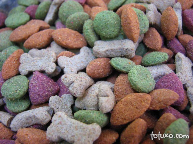 Ração colorida faz mal para a saúde dos cachorros! Entenda os motivos
