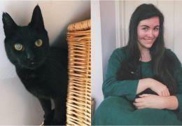 Mulher reencontra gato desaparecido por 8 anos
