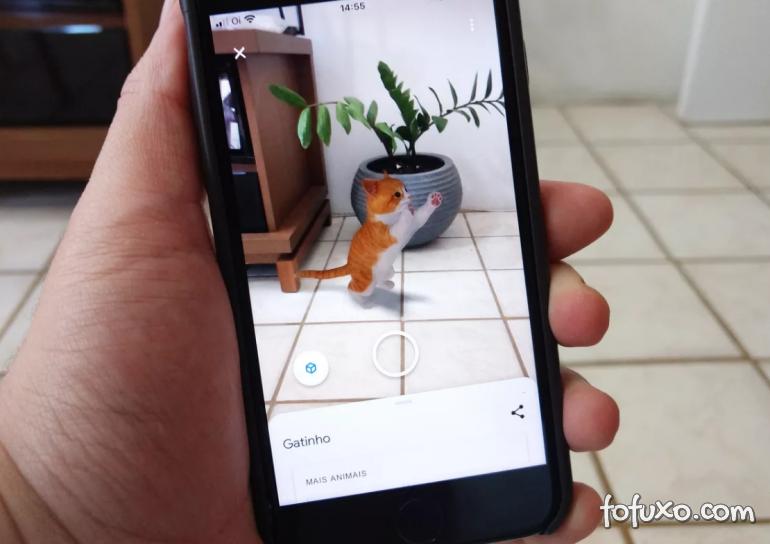 Gatos e cachorros chegam à busca de animais 3D do Google