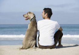 Donos de cães são pessoas mais atraentes