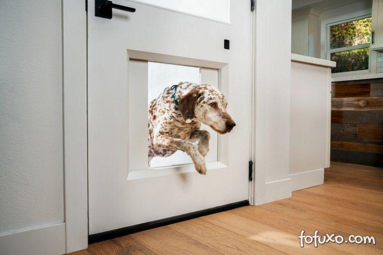 Empresa cria abertura para cachorro acionada por smartphone