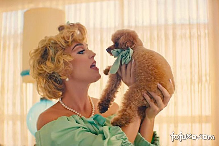 Katy Perry é criticada após oferecer dieta vegana ao seu cachorro