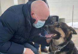 Homem adota cão que salva a sua vida