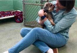 Mulher reencontra cachorro perdido após 7 anos