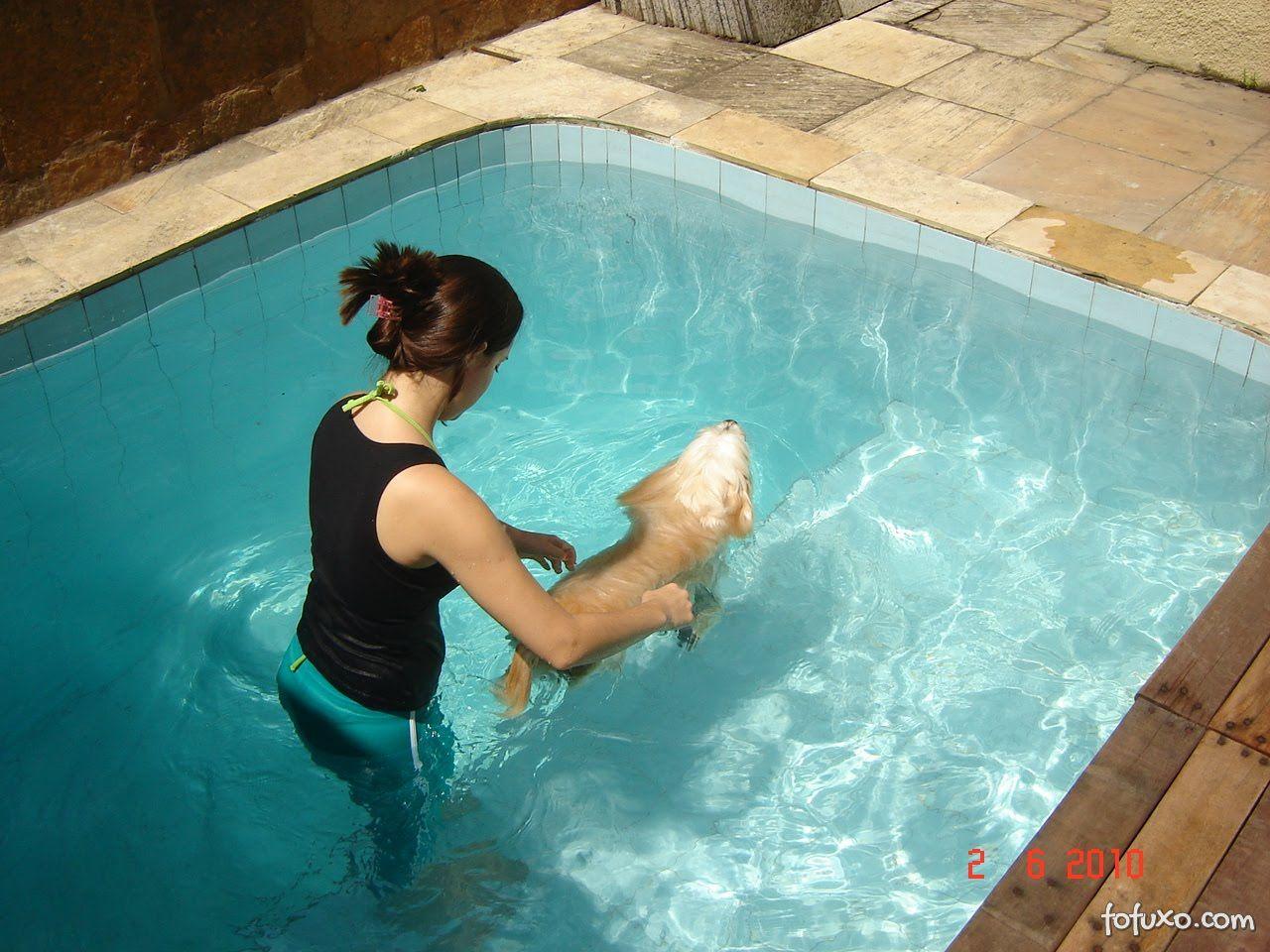 Cães com Displasia Coxofemoral devem praticar exercícios.