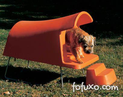 Casinha alta é dica para proteger cão no inverno.