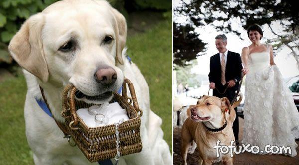 Cachorros que participam do casamento devem ser treinados.