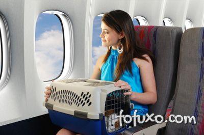 Levando o Pet dentro do avião
