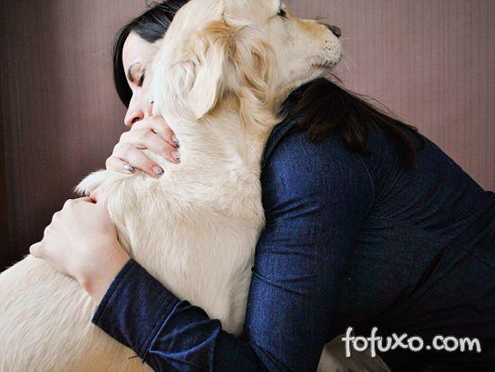 Cachorros enxergam dono como seus pais