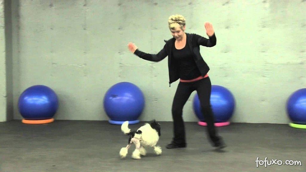 Canine Freestyle
