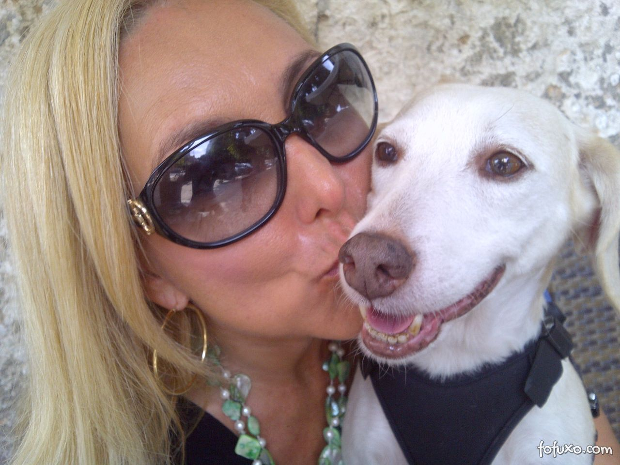 Lista de cães perigosos será substituída na Itália