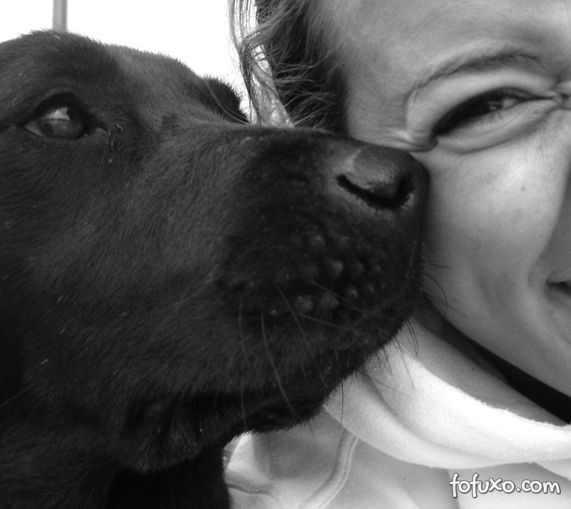 Estudo comprova que cachorros possuem sentimentos como os humanos