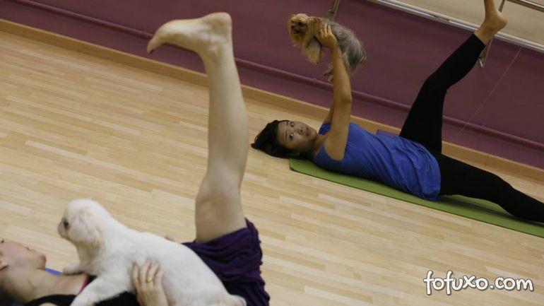 Saiba mais sobre Yoga para Cachorros