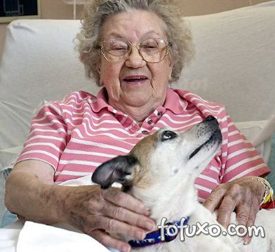 Cães podem auxiliar no combate a pressão alta