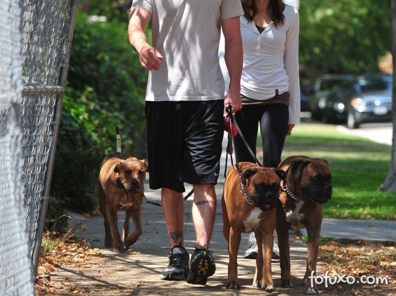 A importância do passeio para os cães