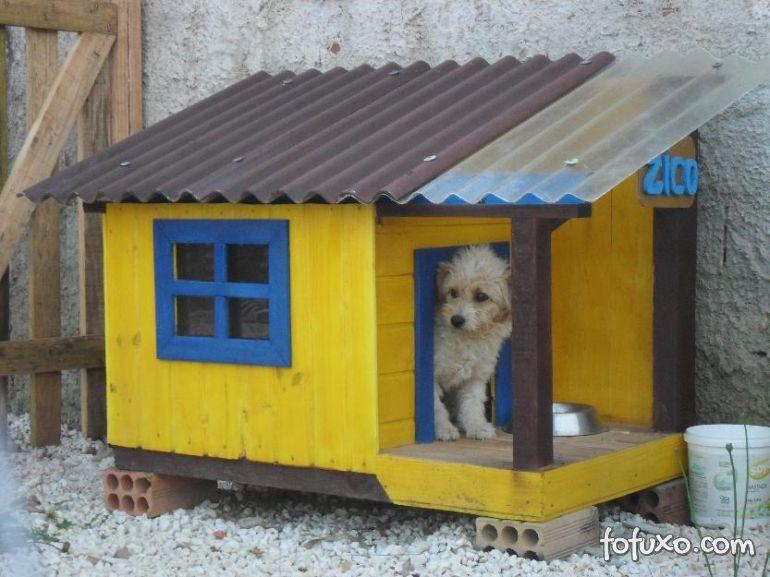 Confira algumas dicas para escolher a casinha de cachorro