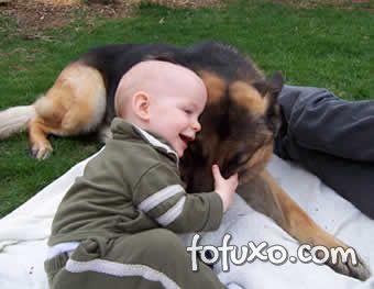 Estudos comprovam necessidade de amassar e apertar filhotes fofos