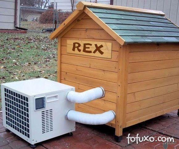 O ar-condicionado faz mal para os pets?