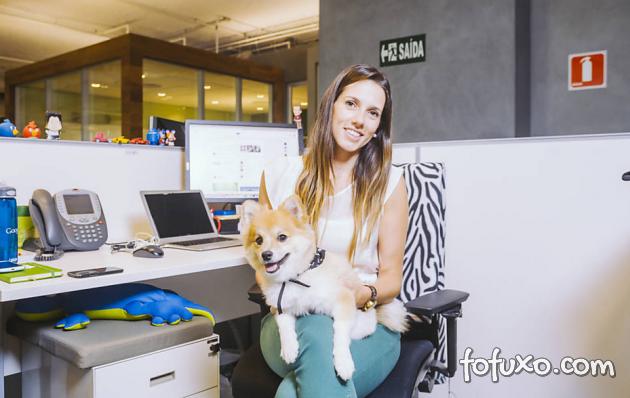 Escritório do Google no Brasil permite animais domésticos no ambiente