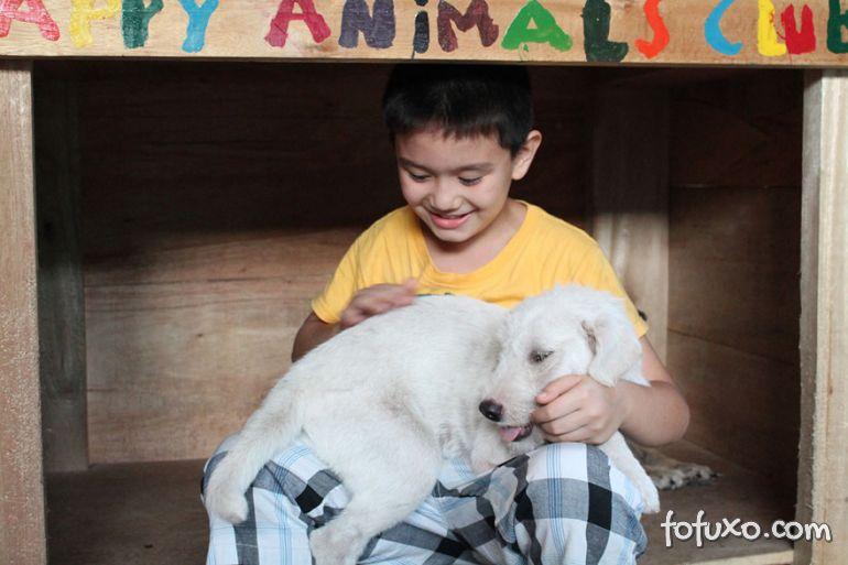 Menino de 8 anos das Filipinas cria abrigo para cachorros abandonados 2