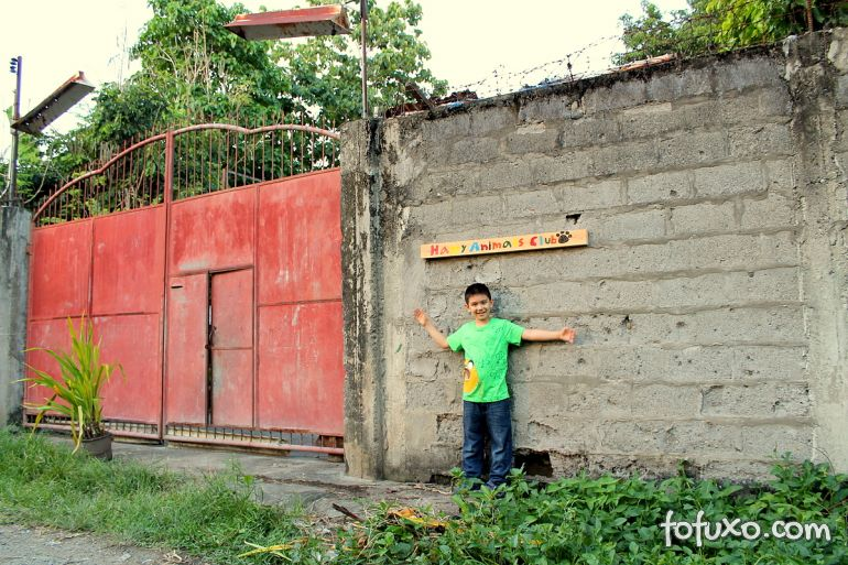Menino de 8 anos das Filipinas cria abrigo para cachorros abandonados 4