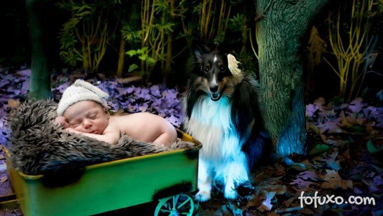 Fotógrafa cria ensaios com bebês e cães - Foto 2