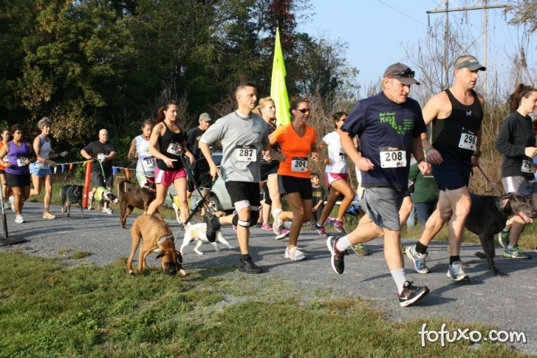 Shopping organiza 1º Pet Run