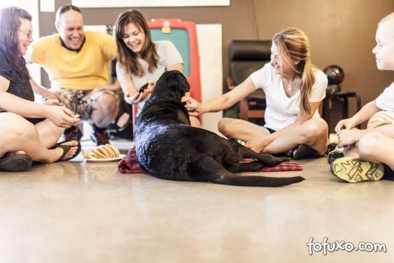 Família registra história emocionante de último dia de vida de cão 4