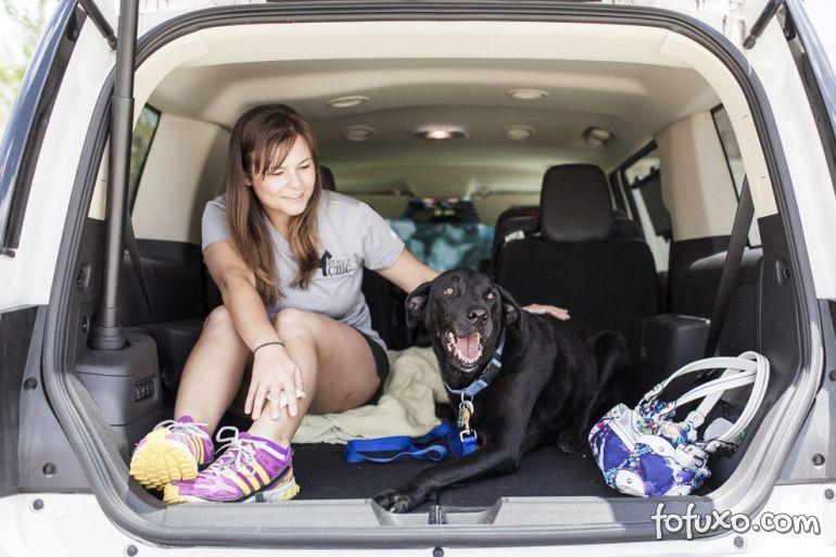 Família registra história emocionante de último dia de vida de cão 7