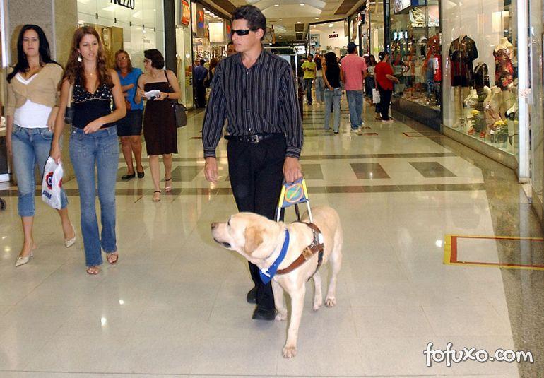 Estão abertas inscrições para cadastro de uso de cão-guia