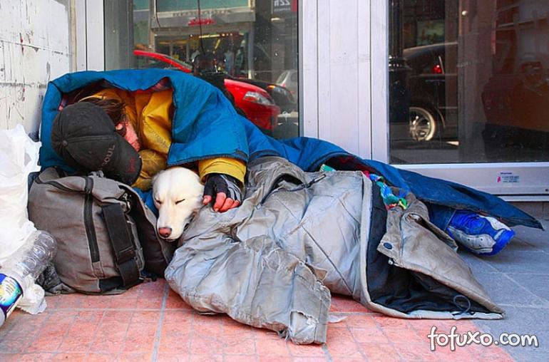 Fotos mostram amor de moradores de rua por seus cães - Foto 3