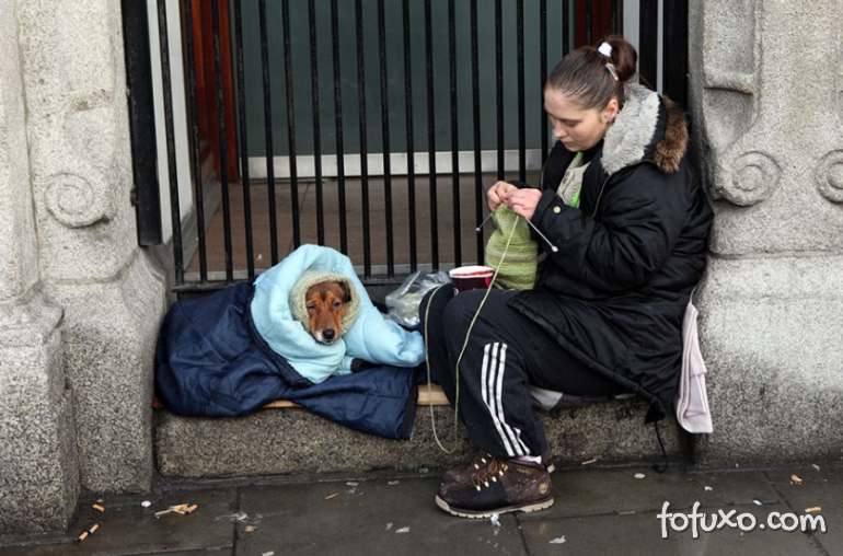 Fotos mostram amor de moradores de rua por seus cães - Foto 6