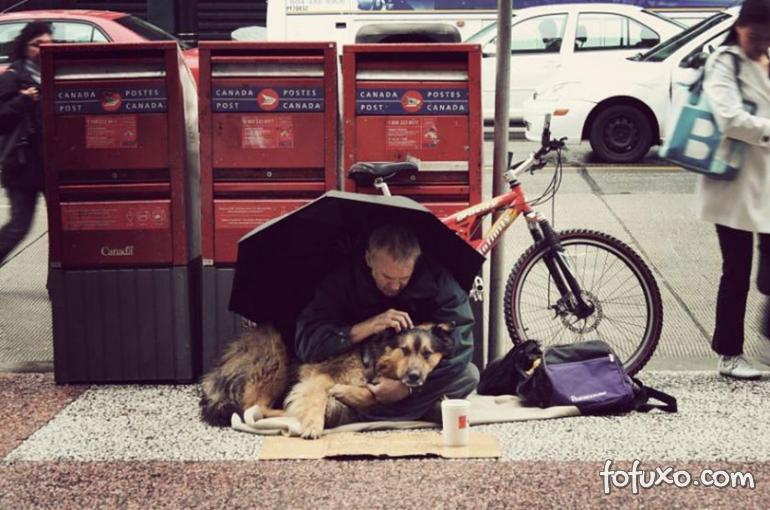 Fotos mostram amor de moradores de rua por seus cães - Foto 8