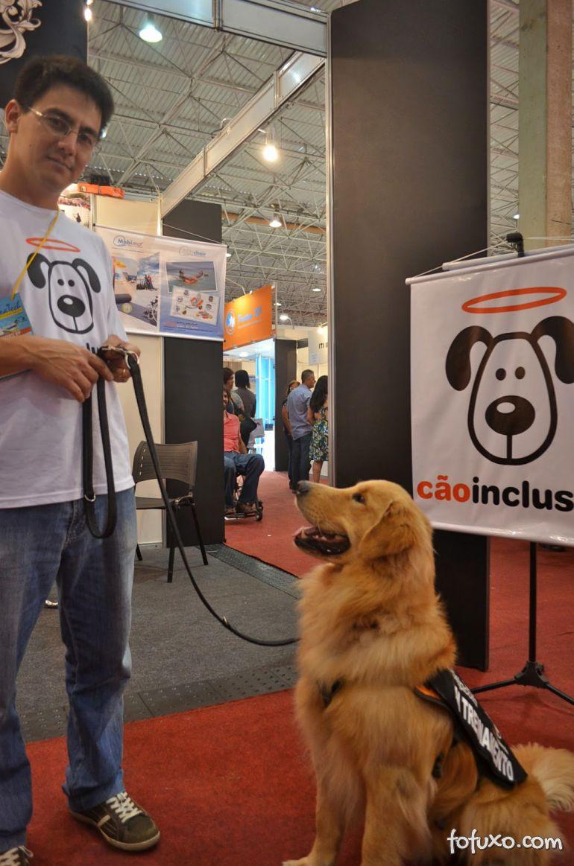 Conheça o projeto que treina e doa cães para cadeirantes