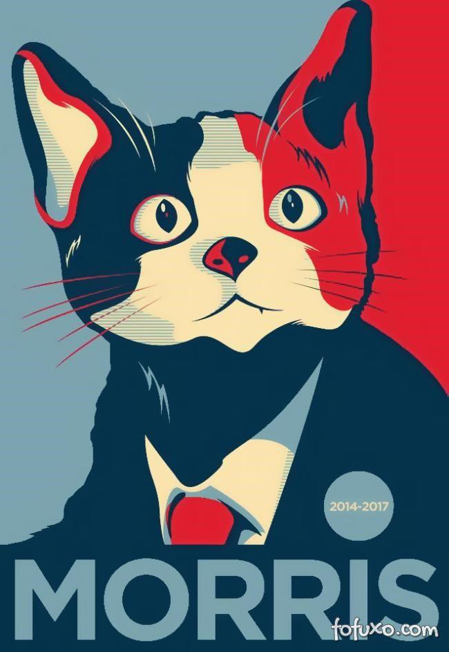 A importância dos pets nas eleições