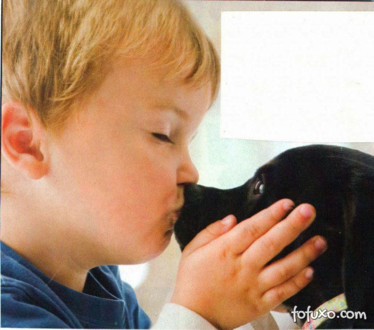 Cães teriam a mesma inteligência de uma criança de cinco meses