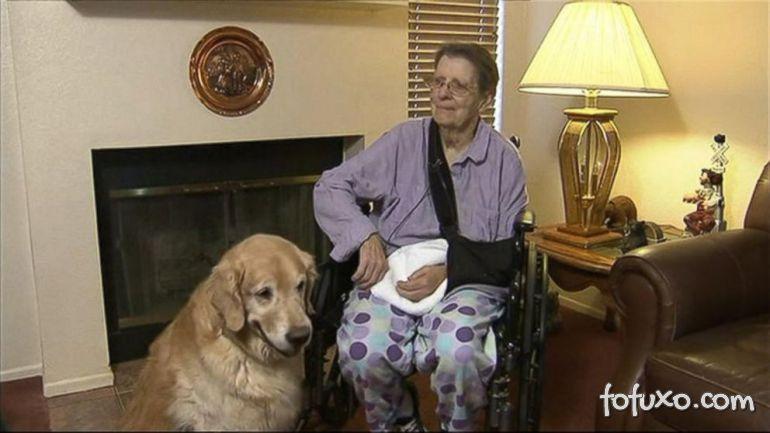 Idosa afirma que cães salvaram sua vida