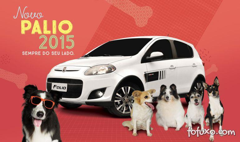 Montadora de veículos incentiva doação de cães