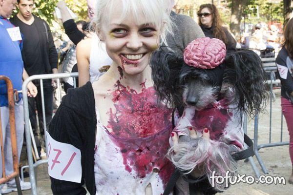 Cachorros e gatos também comemoram o Halloween - Foto 5