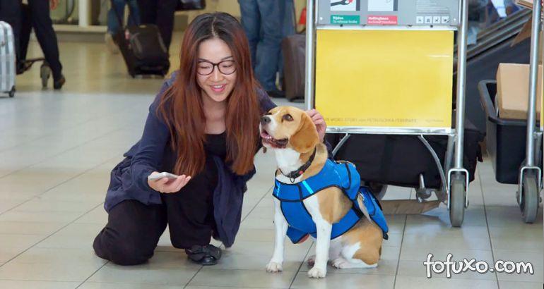 Companhia aérea cria campanha com cachorro que entrega objetos perdidos