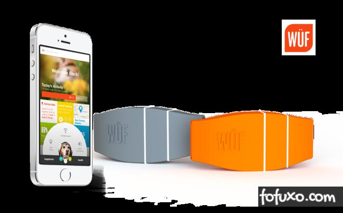 Empresa norte-americana lança novo protótipo de coleira inteligente