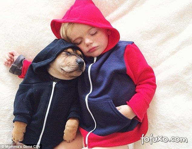 Mãe faz sucesso na web com fotos do seu cachorro junto com seus filhos - Foto 1