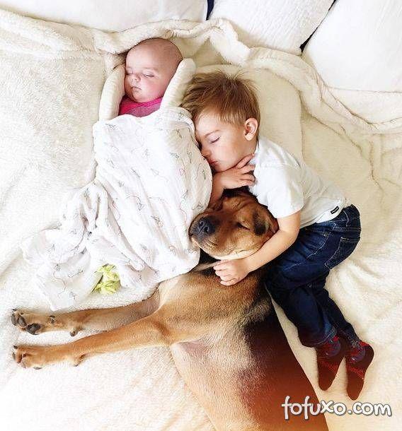 Mãe faz sucesso na web com fotos do seu cachorro junto com seus filhos - Foto 5