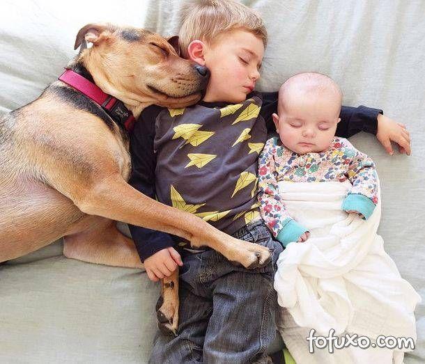 Mãe faz sucesso na web com fotos do seu cachorro junto com seus filhos - Foto 6