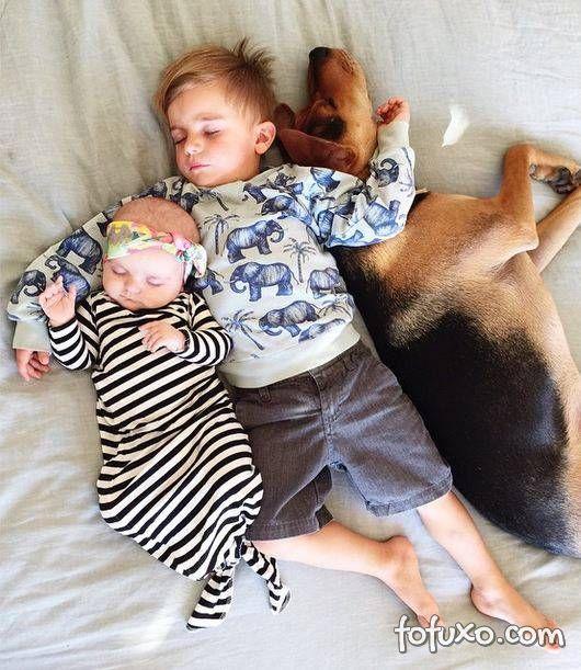 Mãe faz sucesso na web com fotos do seu cachorro junto com seus filhos - Foto 7
