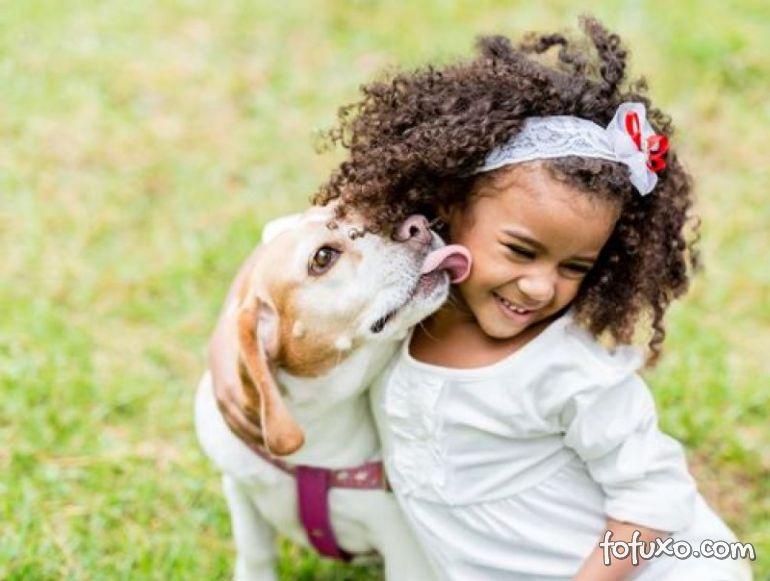 Confira algumas dicas para que cães e bebês convivam bem