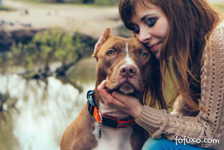 Confira 5 estudos que comprovam que cães fazem bem para saúde