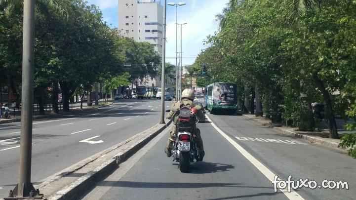 Cachorro anda na garupa de motocicleta e faz sucesso pelas ruas