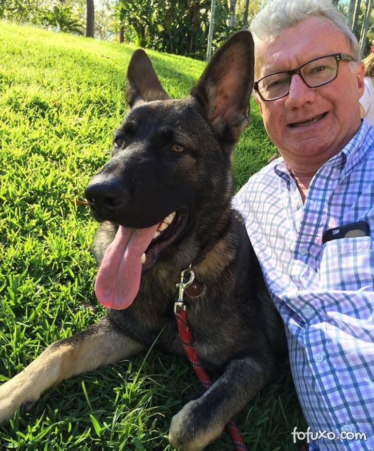 Cachorro foi dispensado da polícia por ser dócil demais