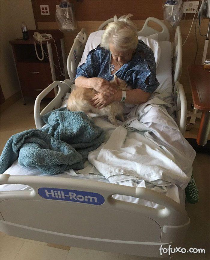 Jovem disfarça cachorro para conseguir entrar em hospital